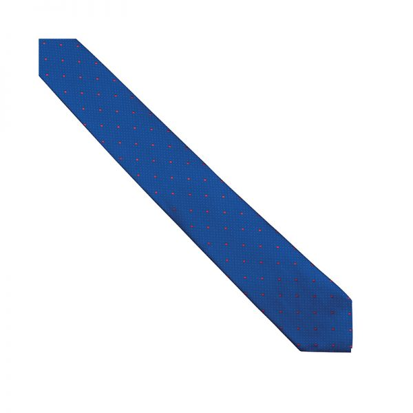 corbata-roger-850205-azulina-topos