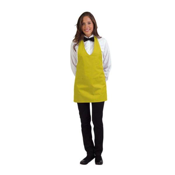 delantal-eurosavoy-110801c-montpellier-amarillo